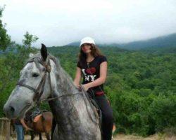 Прогулка на лошадях в лесу