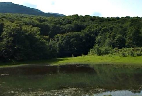Кутузовское озеро летом